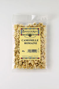 grossiste Camomille Romaine