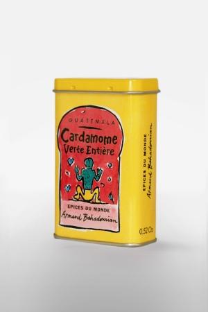 Boite à Epice Cardamome Verte Entière